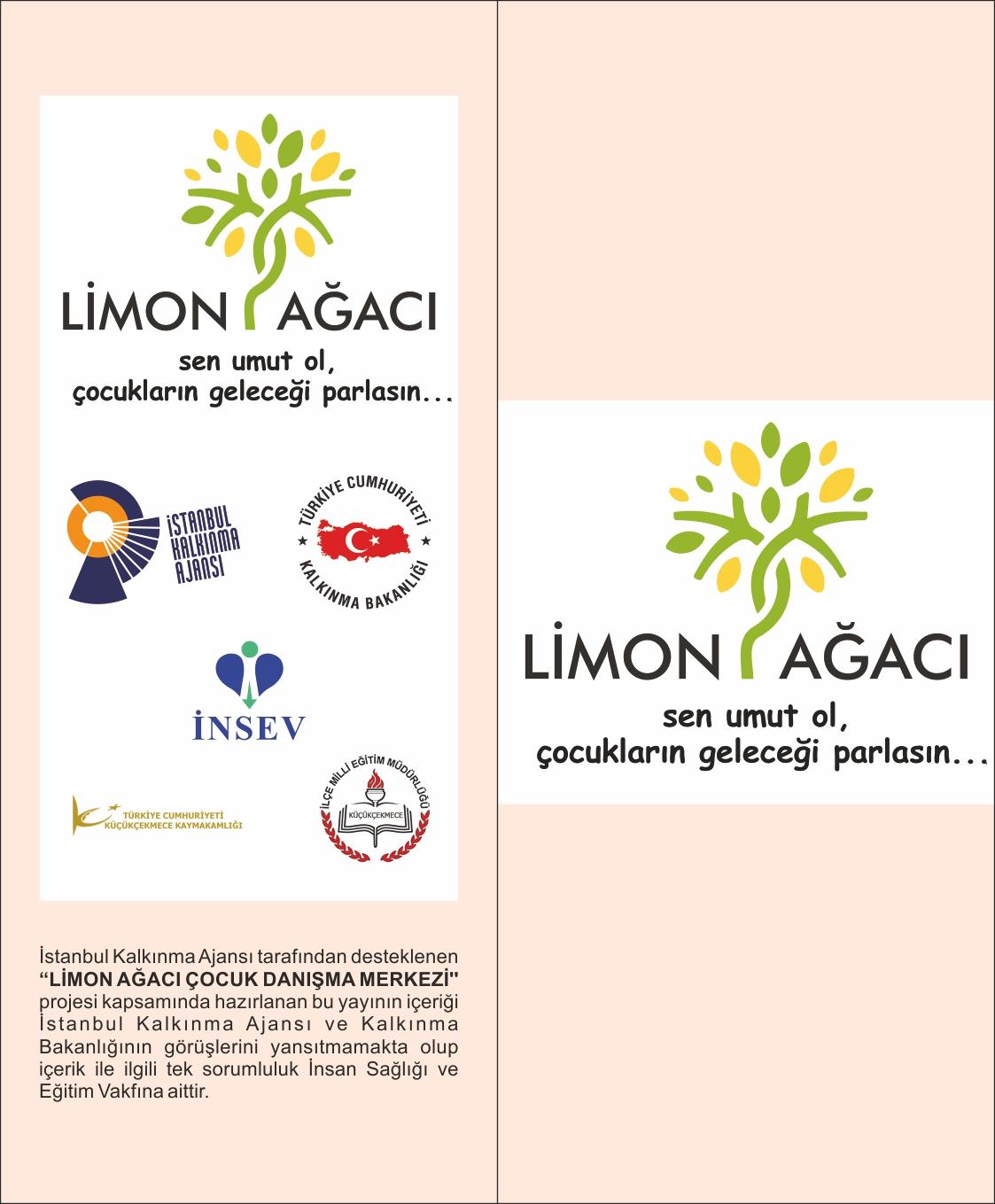 limon-agaci_brosur-dis
